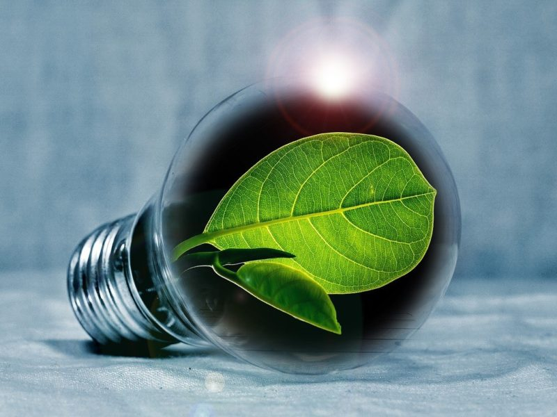 eco-friendly design tips for your ohio home